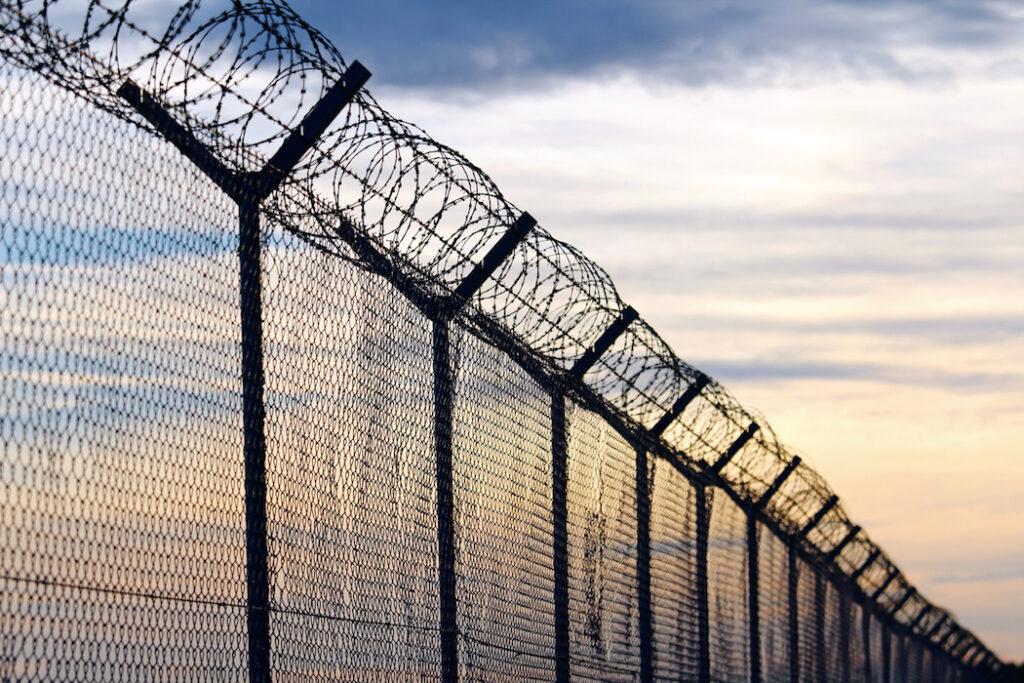 Deportation & Criminal Offenses